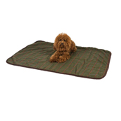 Wainwright's Green Check Dog Throw
