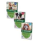 Advantage Spot On Solution for Dogs