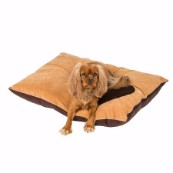 Tan Corner Paw Print Dog Doza (Online Only)