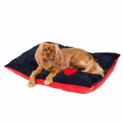 Navy Corner Bone Print Dog Doza (Online Only)