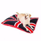 Navy Union Dog Doza (Online Only)