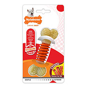 Nylabone Pro Action Dental (Online Only)