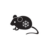 Monkfield Frozen Mouse Large (Store Only)