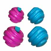 Grab Ball Dog Toy