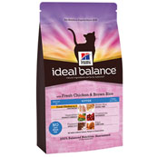 Hills Ideal Balance Kitten with Fresh Chicken and Brown Rice