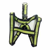 3 Peaks Vision Reflective Green Dog Harness