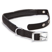 Black Nylon Padded Dog Collar