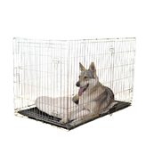 Double Door Dog Training Crate
