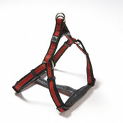 Padded Harness Red