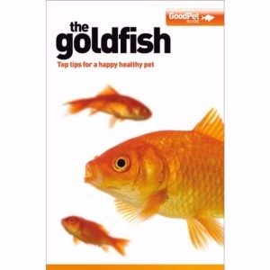 Image for The Goldfish from Pets At Home