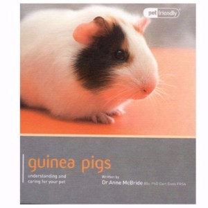 Image for Guinea Pigs Pet Friendly from Pets At Home