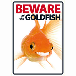 Image for Beware of the Goldfish from Pets At Home