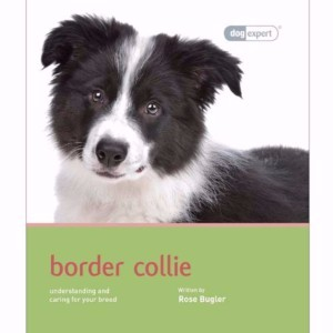 Image for Border Collie by Dog Expert from Pets At Home
