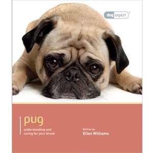 Image for Pug Dog Expert from Pets At Home