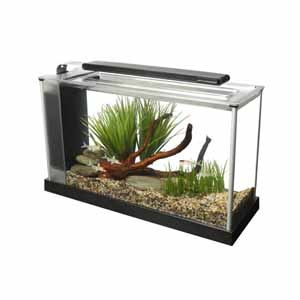 Image for Fluval Spec 19 Litre Black (Selected Stores and Online Only) from Pets At Home