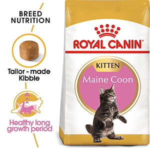 Image for Royal Canin Maine Coon Kitten 4kg (Online Only) from Pets At Home