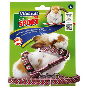 Image for Vita Sport Harness and Leash Set Large(Online Only) from Pets At Home