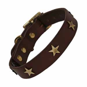Image for Creature Clothes Leather Collar Chocolate (Online Only) from Pets At Home