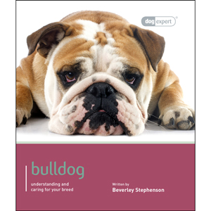 bulldog food delivery dog expert bulldog book home delivery pets at home 426